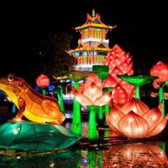 Festival de Faroles Chinos en Barcelona