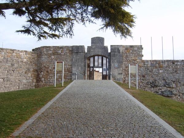 Castillo de Burgos espectáculos verano