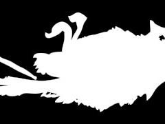 Sala Black Bird