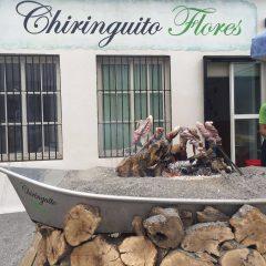 Flores Chiringuito Restaurante