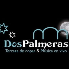 Dos Palmeras: Terraza de copas y música en directo