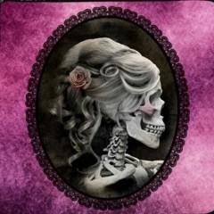Peluquería Pink Skull