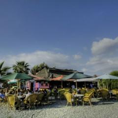 SUMO – Café en el Mar