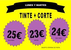 tinte2