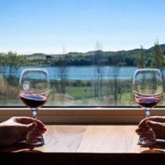 Conversación en torno al vino, El Rioja y los 5 Sentidos
