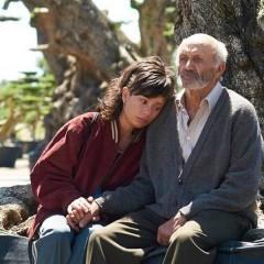 'El olivo' de Icíar Bollaín, tráiler