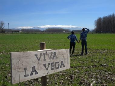 El Festival Viva la Vega 2016 se celebra en Fermasa