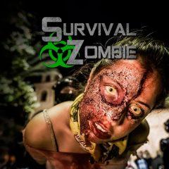 Survival Zombie Real Game en Burgos
