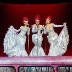 Gira de Priscilla reina del desierto, el musical