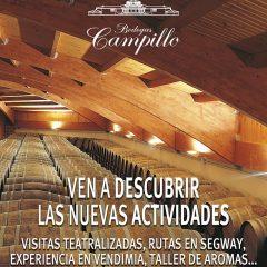 """""""Experiencia en vendimia"""" en Bodegas Campillo"""