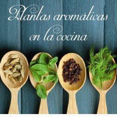 Plantas aromáticas en la cocina en la Semana Gastronómica en Viana
