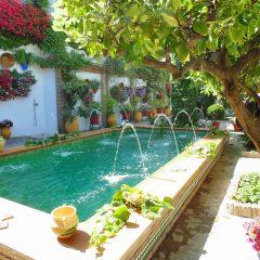 V Concurso de patios, balcones y rincones típicos de la Subbética cordobesa