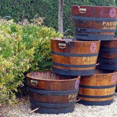 Tourcookings en Pagos del Rey Museo del vino