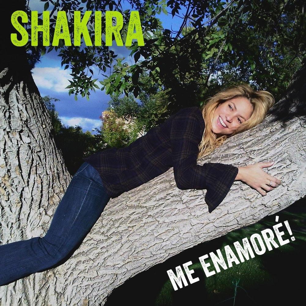 la canción me enamoré de Shakira