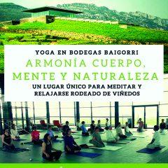 Día del Yoga en Bodegas Baigorri