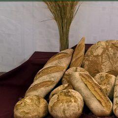 Ecoeco Panadería y Alimentación Ecológica