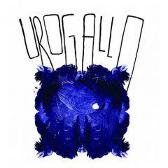 II Festival de Poesía Expandida 'Urogallo'