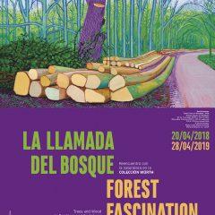 Nueva exposición en el Museo Würth, La LLamada del Bosque