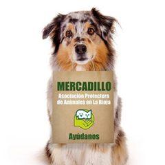 Mercadillo solidario de la Protectora de Animales