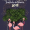 Programación 'Fiestas de San Pedro del Pinatar 2018'