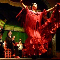 El Palacio Andaluz flamenco en vivo