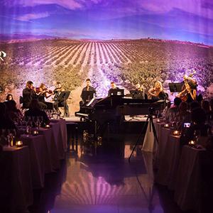 El Rioja y los 5 Sentidos, mes de la VISTA, del vino en imágenes.