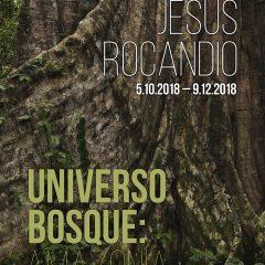 La Obra Invitada. Jesús Rocandio. Universo Bosque. Amazonia
