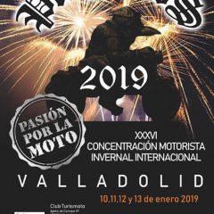 Descárgate gratis el pdf con toda la programación y actividades de Pingüinos 2019 en Valladolid