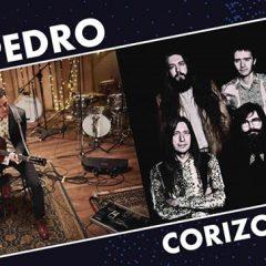 Concierto de Depedro + Corizonas en el Hangar