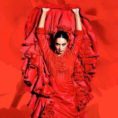 Emociones en Teatro Flamenco Madrid
