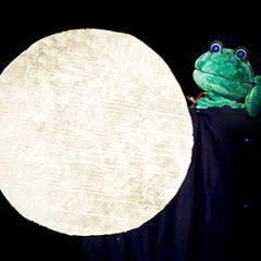Una rana en la luna en Teatros Luchana en Madrid