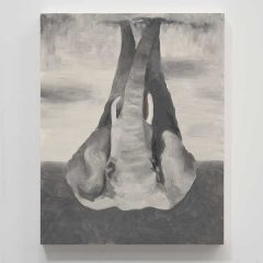 Babak Golkar. The Elephant (an intermission) en Sabrina Amrani en Madrid