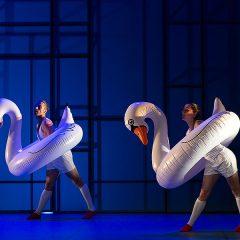 Play (Aracaladanza) en Teatro Salón Cervantes en Madrid