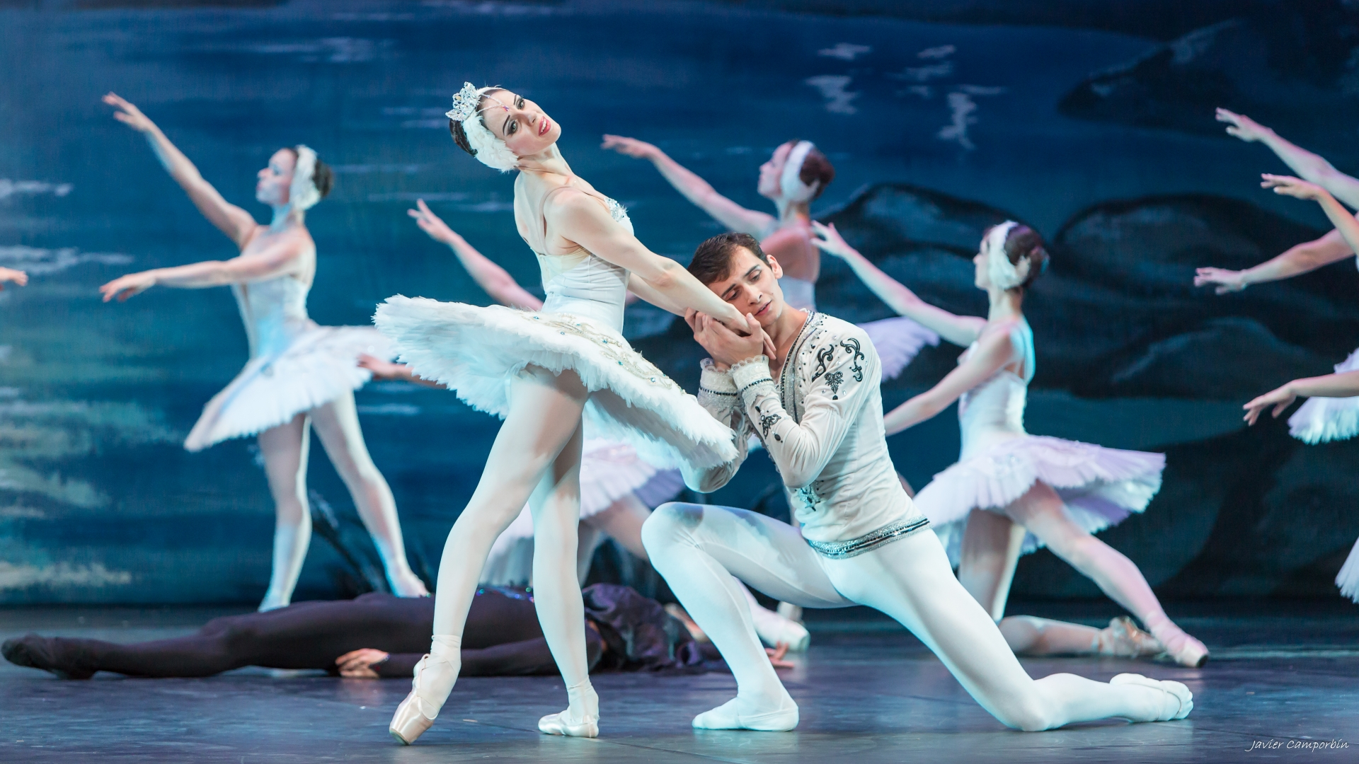 El Lago de los Cisnes en el Teatro Cervantes de Málaga - La Guía ...