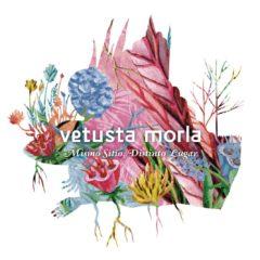 Mismo Sitio, Distinto Lugar de Vetusta Morla Disco de Platino en España