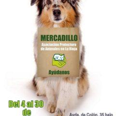 26º Mercadillo solidario de la protectora de animales