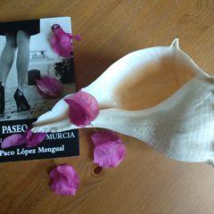 «Paseo por Murcia» la obra, en Teatro Villa de Molina
