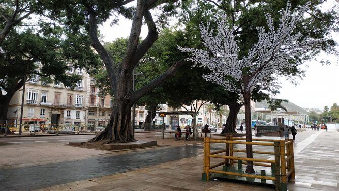 Luces y espectáculos navideños en Marqués de Larios - La Alameda - Acazabilla en Málaga