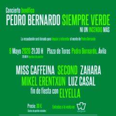 Concierto de Concierto benéfico: Pedro Bernardo Siempre Verde en Plaza de toros de Pedro Bernardo en Ávila