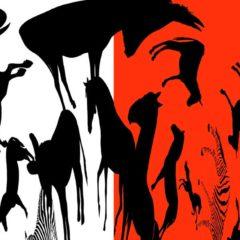 El Venadito. Juntos contra el maltrato animal en Museu de Granollers de Ciències Naturals en Barcelona
