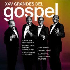 Concierto de XXV Festival Grandes del Gospel 2019 en Teatro Fernán Gómez – Centro Cultural de la Villa en Madrid