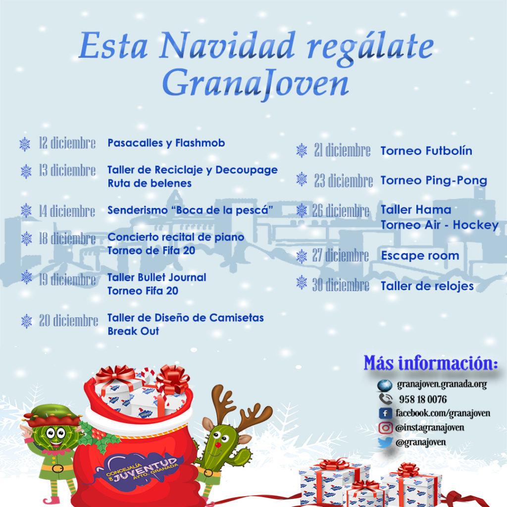 Toda la agenda y actividades de esta Navidad 2019 2020 Granada