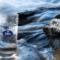 El agua a domicilio, una buena alternativa al agua del grifo