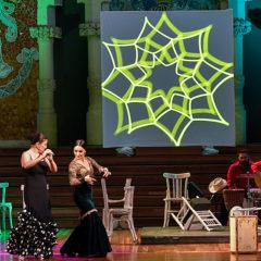 Concierto de Flamenkat en Palau de la Música Catalana en Barcelona