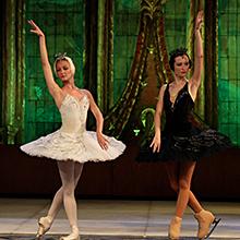 El Lago de los Cisnes (Usmanov Classical Russian Ballet sobre hielo) en Centro de Exposiciones y Congresos Lienzo Norte en Ávila