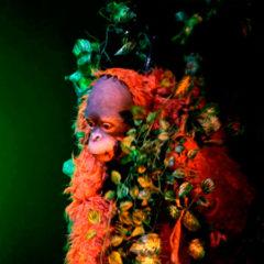Jojo en Teatro Auditorio Adolfo Marsillach en Madrid