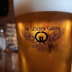 Sesión Electrónica en The Golden Garden