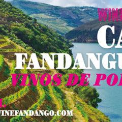 Febrero en Wine Fandango