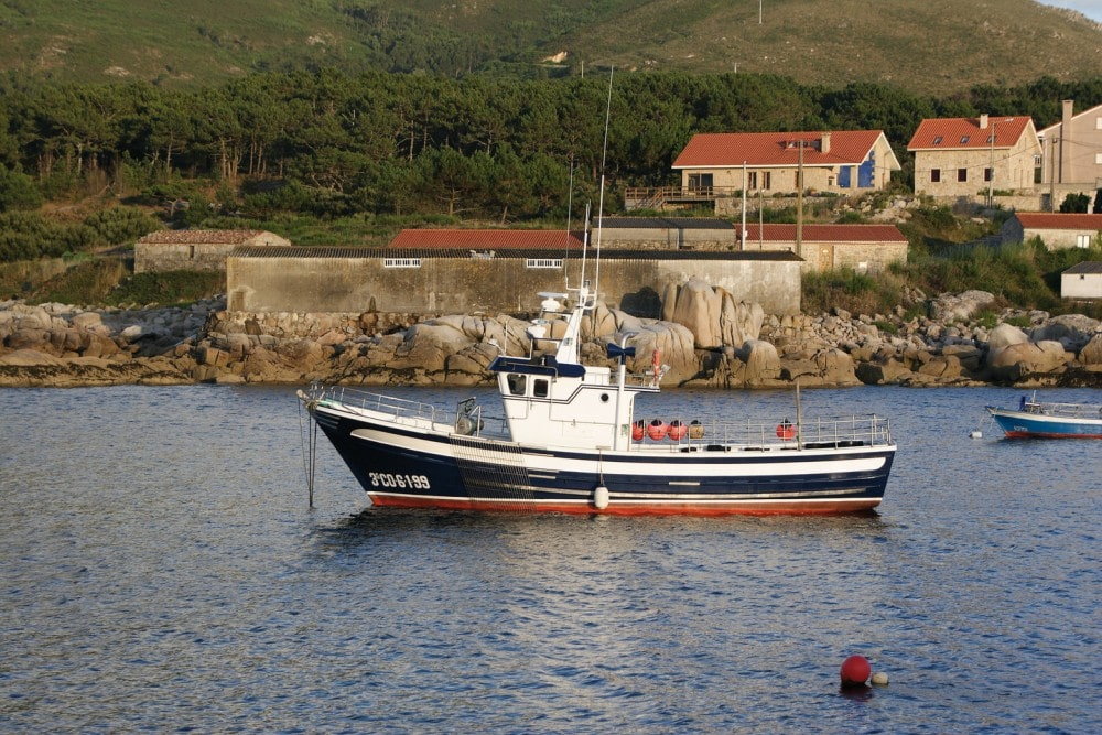 Experiencias marineras Galicia pulpo