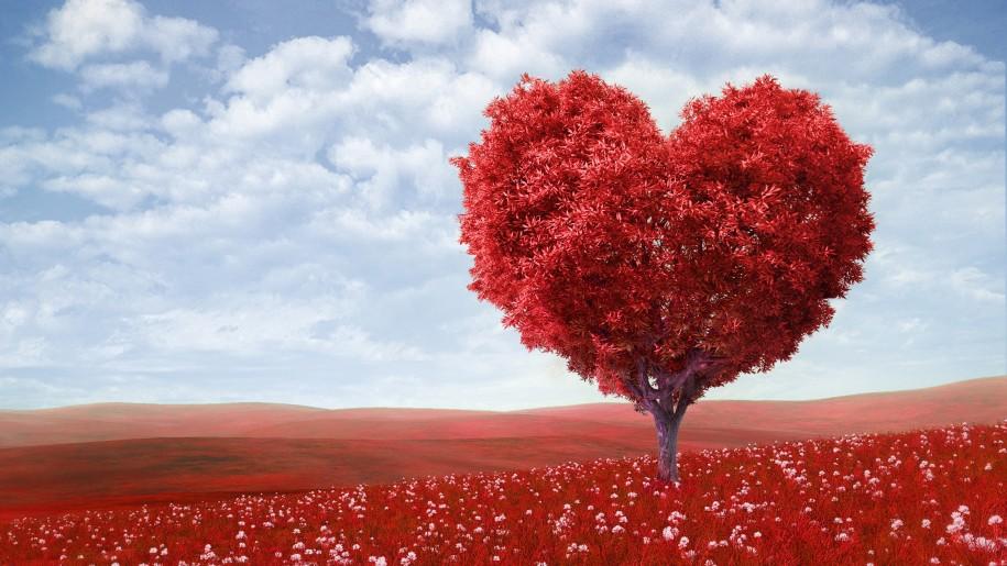 San Valentín Burgos 2020: planes para salir con tu pareja